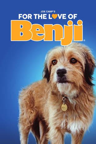 ბენჯი (ქართულად) / Benji / benji (qartulad)